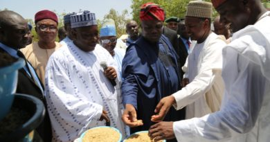 Ambode, rice mill project